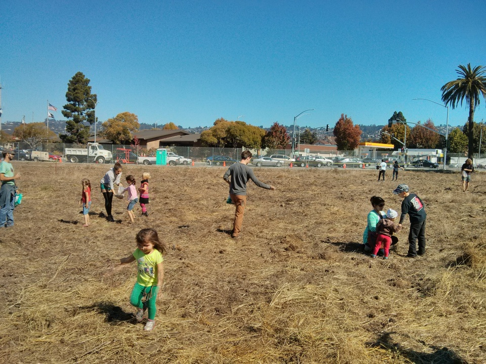 Seeding the new Gill Tract community farm