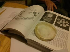 BARMPetriParty-BookPetri